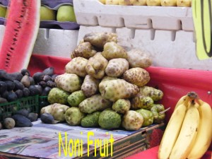 Noni fruit