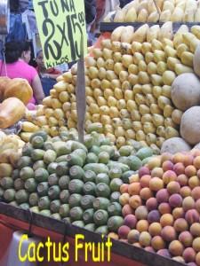 cactus fruit